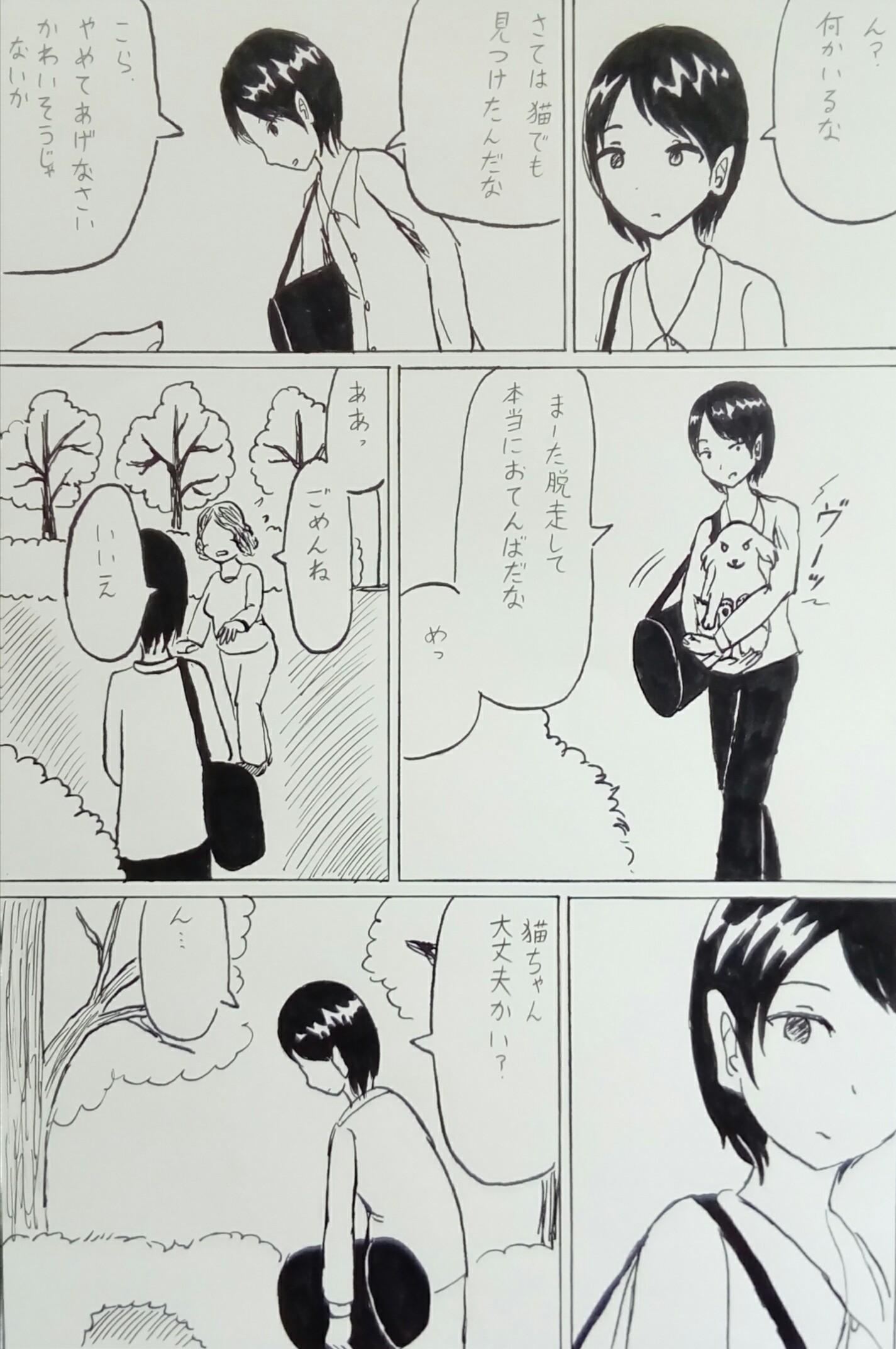 狸と少年(マンガ)